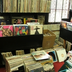 Mushroom Record Store Vinyl Section