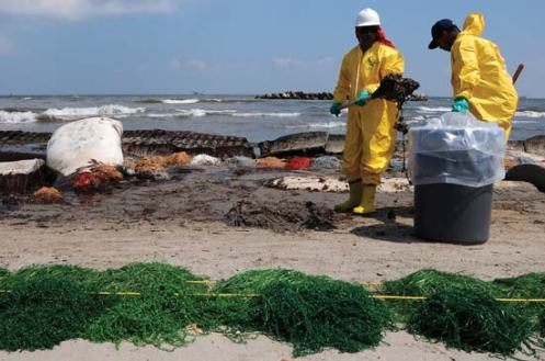 Deepwater Horizon Cleanup