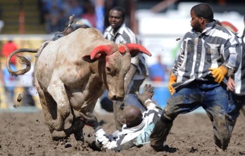 angola-rodeo